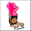 Youngevity Mineral Makeup Daytime Diva Kit