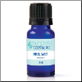 Birch, Sweet Essential Oil – 10ml