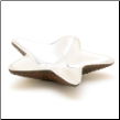 Seaway Starfish Decorative Dish